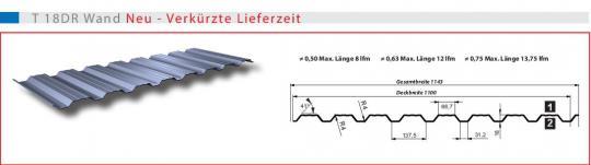 Trapezblech Wand Holzanmutung 18mmDR-0.5mm