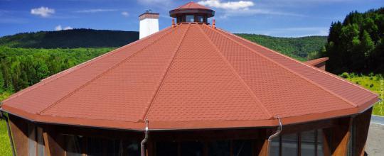 Biberschwanz-Dachblechpaneel